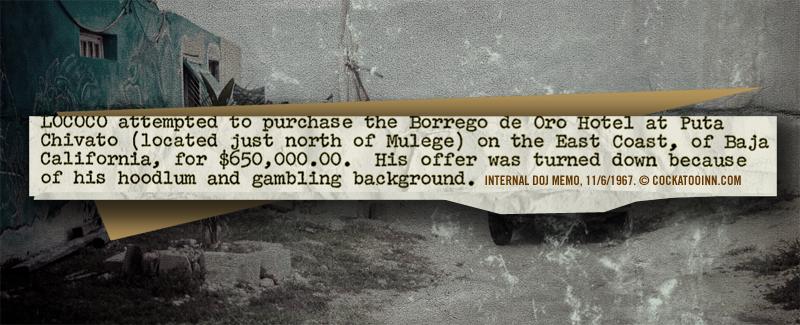 borrego-de-oro-cockatooinn.com